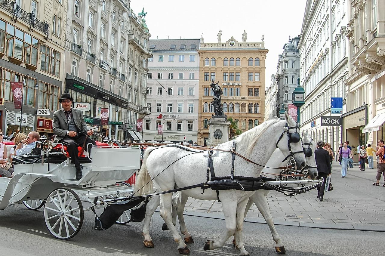 Primark Vídeň kam na vánoční trhy víden 2015